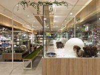 International Ceramics - Oxford Project (3)